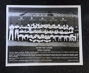 1978 NEW YORK YANKEES BASEBALL TEAM PHOTO ORIGINAL