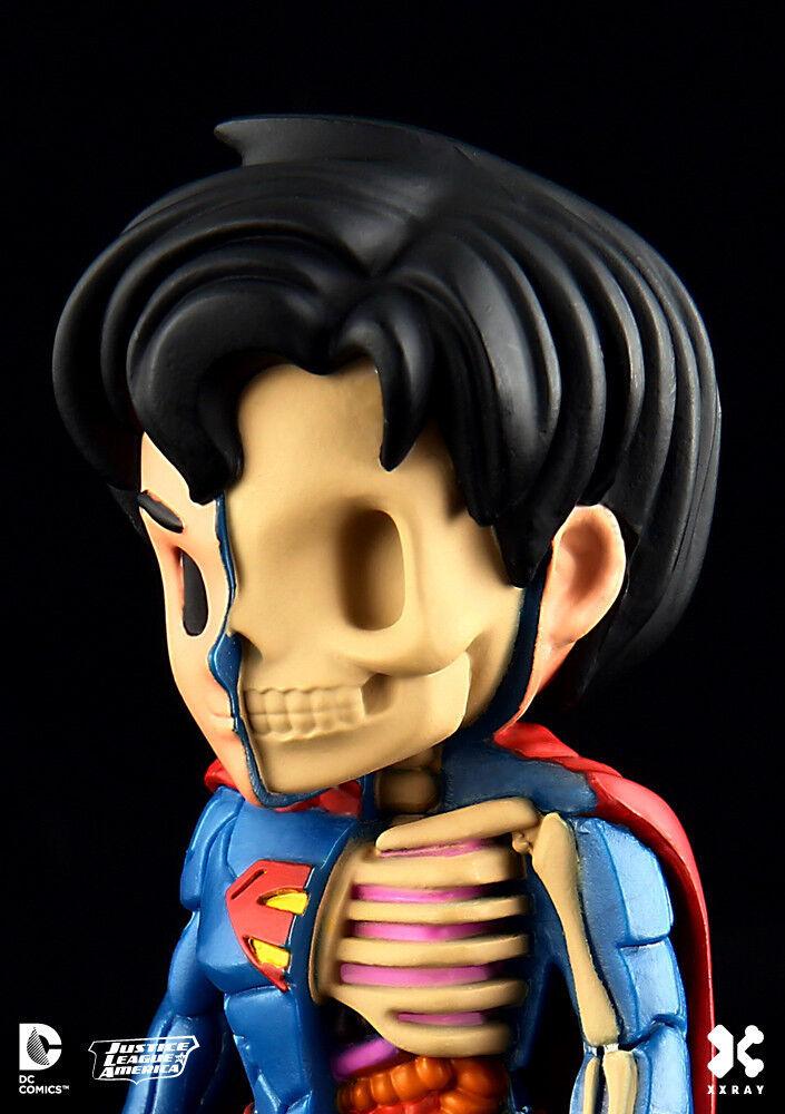 JASON FREENY  superman  XRAY - ed-lim + boite /medicom/mighty jaxx/kidrobot/kaws