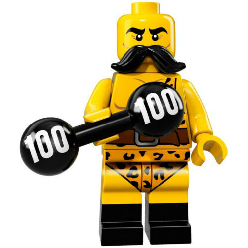 Lego Minifigure 71018 Series 17