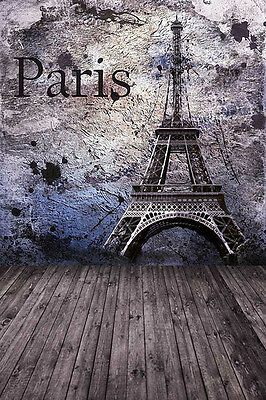 Paris Wall 8'x12' CP Backdrop Computer-painted Scenic Background HY-CM-4605