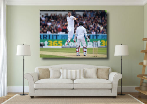 Various Sizes Jimmy Anderson Cricket Giant 1 Piece Wall Art Poster Print