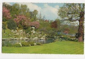 Brighton-The-Rockery-Preston-Park-Old-Postcard-489a