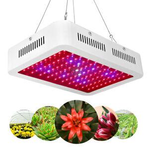 600W-LED-Plant-Grow-Light-Full-Spectrum-Lamp-Indoor-Greenhouse-Veg-amp-Flower-Hot
