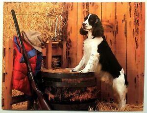 Dog-Poster-Spaniel-Setter-Lithograph-Black-Print-Vintage-Wall-Art-Gun-Barrel-VTG