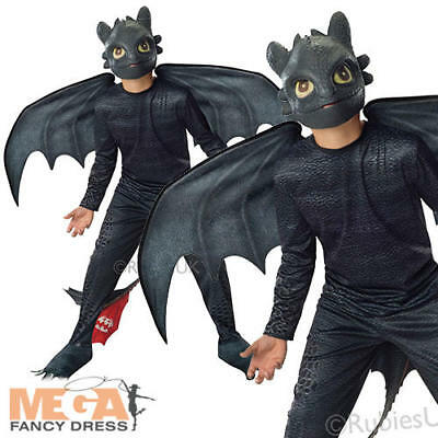 Toothless Night Fury Boys Fancy Dress Train Your Dragon 2 Kids Childrens Costume