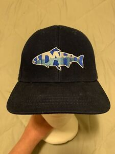 RepYourWater Idaho Mountains Mesh Back Hat