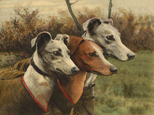 GREYHOUND-CHARMING-DOG-GREETINGS-NOTE-CARD-THREE-BEAUTIFUL-DOGS-HEAD-STUDY