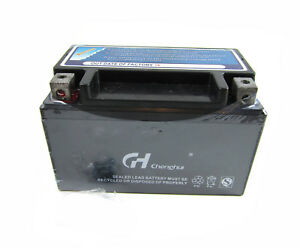 Details about 12V Battery For Champion 3400 / 3100 Watts Inverter Generator  Model# 100261