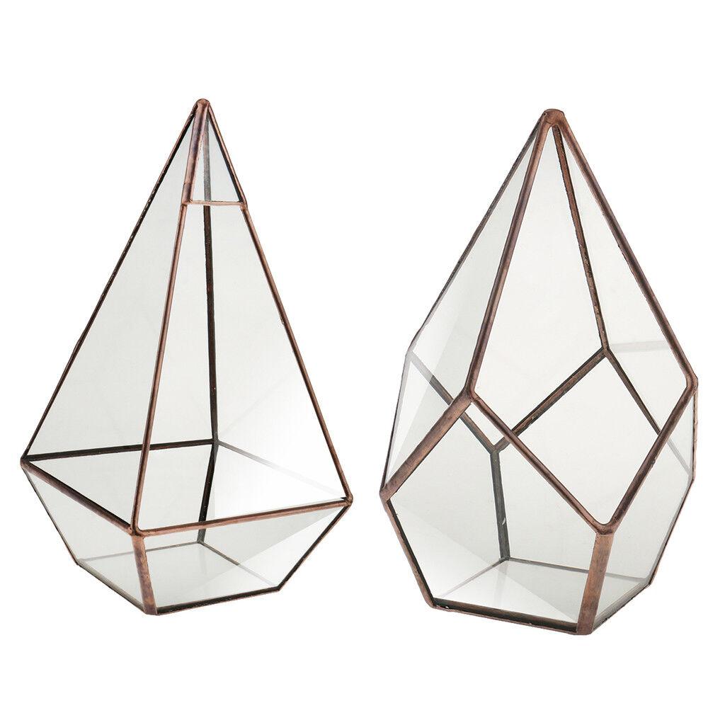 Pyramide Diamant Diamant Diamant geometrisches Terrarium Kasten Tischplatte saftiges | Konzentrieren Sie sich auf das Babyleben  4de533
