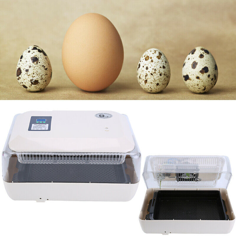 24 Eier Inkubator Eierbrüter Brutapparat Brutkasten für Huhn Ente Geflügel NUE