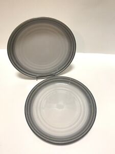 Noritake-SIERRA-TWILIGHT-Stoneware-8667-Dinner-Plate-s-10-3-8-034-Set-of-2-Japan