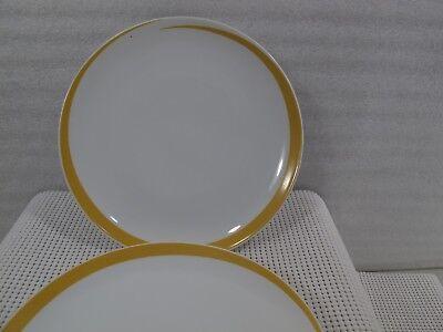 Vintage Studio Nova Cycles Y0111 Ceramic 11 INCH DINNER plate Blue Stripe x 509