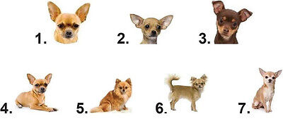 Waterslide Dog Nail Decals Set of 20 - Chihuahua - You Choose