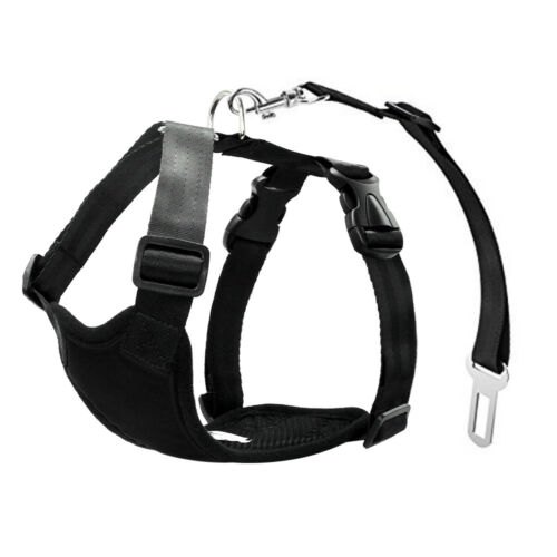 Nylon Dog Car Harness and Seat Belt Clip Leash Set With for Dogs Black Red XS S