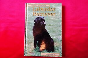 Labrador-Retreiver-Pet-Owner-039-s-Guide-Diana-Beckett-1998-All-about-Labs