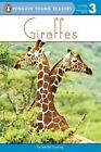 Giraffes by Jennifer Dussling (Hardback, 2017)
