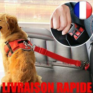 Ceinture-de-Securite-Reglable-Chient-Pet-Chat-Dog-Auto-Voiture-Harnais-Laisse