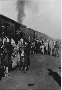 6x4-Gloss-Photo-ww509B-World-War-2-Pictures-Treblinka-tl1