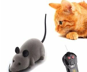 Gioco Per Gatti Topo Telecomandato Irresistibile X Il Gatto Regalo