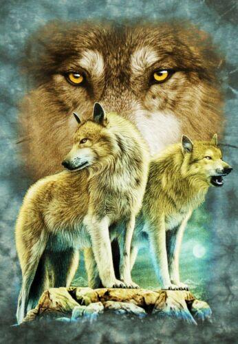 Bambini T-SHIRT LUPI GRIGIO BLU TG 98*104*110*116*122*128*134*140*146*152 Wolf