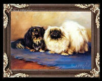 Pekingese Dogs Miniature Dollhouse Doll House Picture