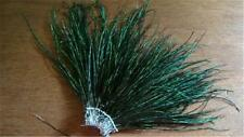 1 NATURAL HERL FLUE: BLUE GREEN PEACOCK PLUMAGE 4-7""