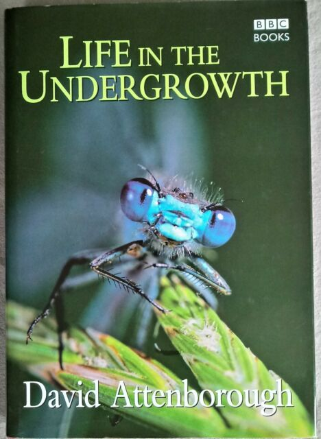 REDUCED! - Life in the Undergrowth by Sir David Attenborough