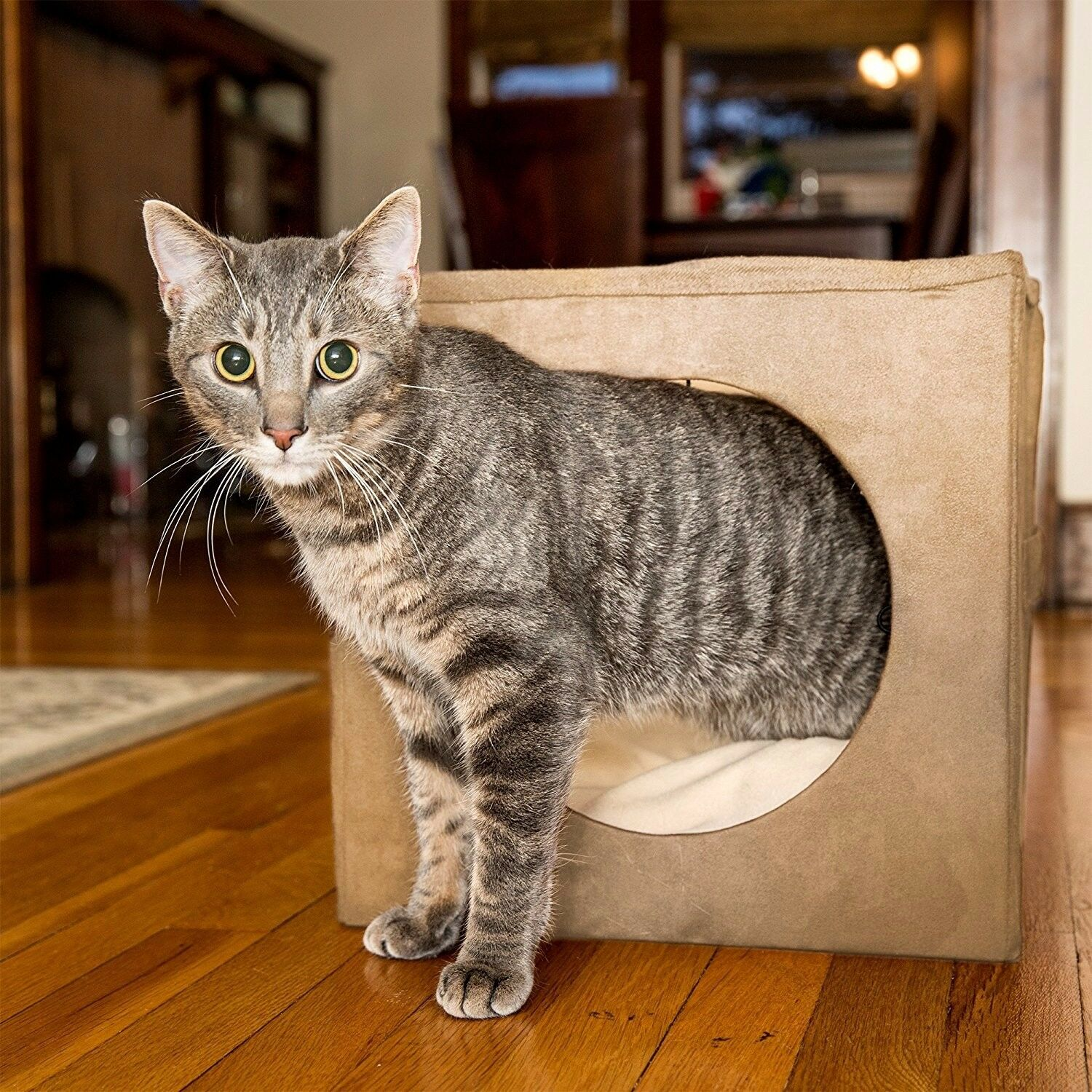 Kitty Zen Den Cat Hideaway - Best Used For A Comfortable Covered Cat Bed, Warm C