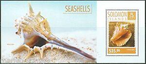 SOLOMON-ISLANDS-2014-SEASHELLS-SOUVENIR-SHEET-MINT-NH