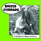 Bolycs Cymraeg by Gomer Press (Paperback, 2016)