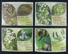 Nepal 2013 Pflanzen Plants Blüten Blossoms Pfeffer Pepper 1117-1120 MNH