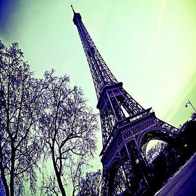 1 WALL PHOTO GIANT WALLPAPER PARIS EIFFEL TOWER PHOTOGRAPHIC MURAL 3.60 x 2.53m