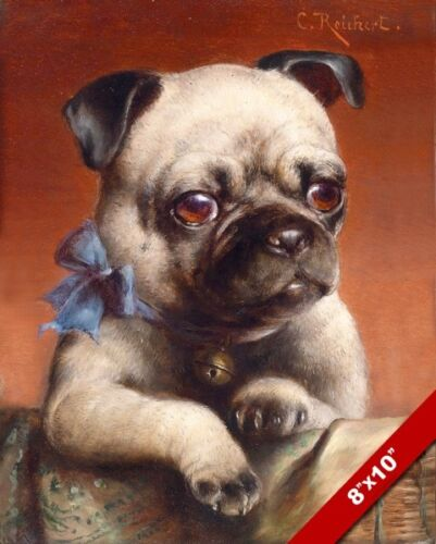 CUTE PUG PUPPY YOUNG DOG CANINE PORTRAIT PAINTING PET DOG ART REAL CANVAS PRINT