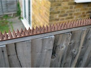 5 Metre Brown Wall Fence Spikes Anti Climb Security Cat Bird