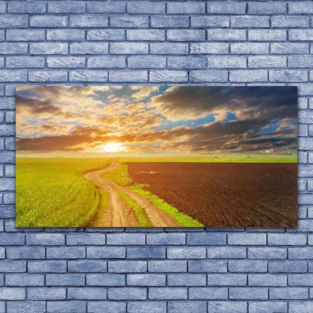 Leinwand-Bilder Wandbild Leinwandbild 140x70 Acker Fußpfad Landschaft