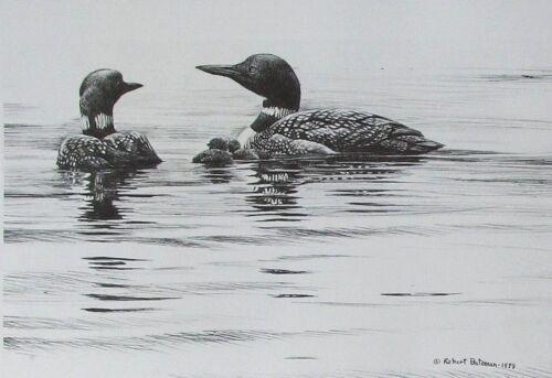 Vintage Art Robert Bateman 2 in 1 Great Blue Heron 1978 Loons Pen Drawing 1979