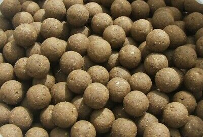 Chocolate Orange Shelflife Fishmeal Boilies 12MM Carp Fishing All Pack Sizes