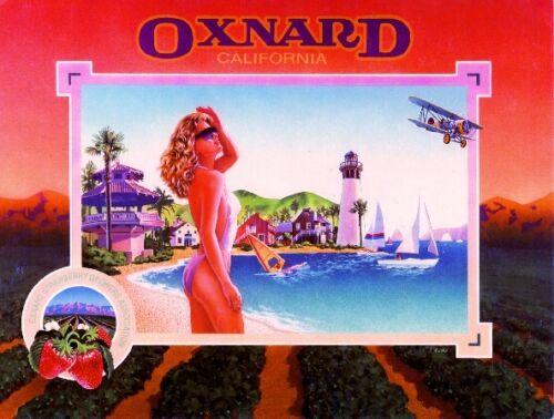 Oxnard Beach Airplane Strawberry Strawberries Fruit Crate Label Art Print