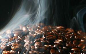 ... 15 lbs El Salvador SHG Santa Maria Coffee Beans RFA Certified | eBay