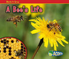 A Bee's Life by Nancy Dickmann (Paperback / softback, 2010)