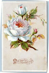 With-Hearty-Greetings-White-roses-postcard