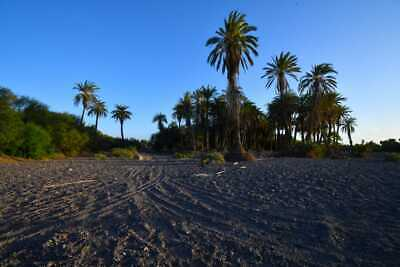Se vende terreno Loreto Palmillas  en Baja California Sur