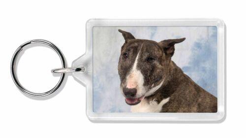 Brindle Bull Terrier Dog Photo Keyring Animal Gift AD-BUT3K