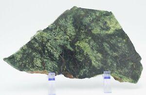 Polished-Western-Australia-Silicified-Serpentinite-Hematite-Slice-Pilbara-Slab