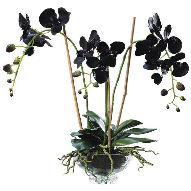 Artificial Black Phalaenopsis Orchid Flower Arrangement Glass Bowl Plant
