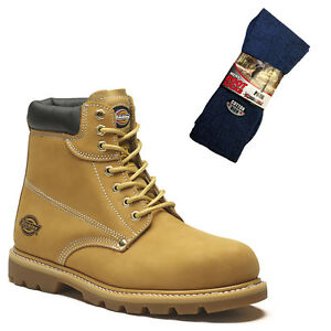 Détails sur Dickies Cleveland Safety Work Boots Tan Honey & 1 paire de chaussettes BOOT afficher le titre d'origine