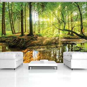 vlies tapete fototapete wandbild wald natur baum sonnen 10513 ve wohnzimmer ebay. Black Bedroom Furniture Sets. Home Design Ideas