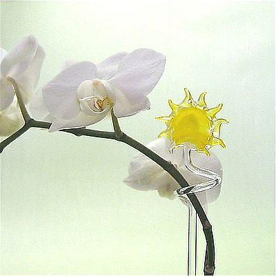 Orchideenstab Orchideenstäbe aus Glas mit Sonne  Lauscha Top Qualität !