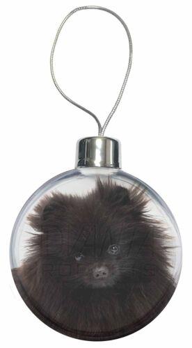 Black Pomeranian Dog Christmas Tree Bauble Decoration Gift AD-PO90CB