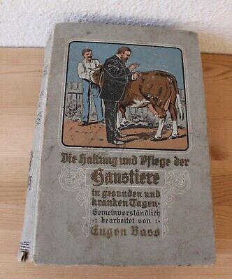 Sonstige PüNktlich Die Haltung U Pflege Der Haustiere In Gesunden & Kranken Tagen Eugen Bass 1910 Schrumpffrei